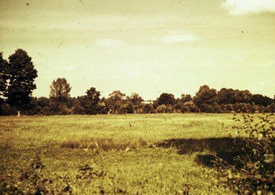 Boults Farm